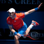 MELBOURNE - JANUARY 25: Andy Murray of Great Britain in his quatter final win over Kei Nishikori of