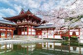 Byodo-in Temple In Uji, Kyoto, Japan During Spring. Cherry Blossom In Kyoto, Japan. poster