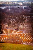 pic of arlington cemetery  - Graves at the Arlington National Cemetery in Washington DC - JPG