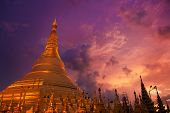 picture of yangon  - Golden Shwedagon Paya - JPG