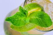 Tequila mint cocktail