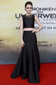 BERLIN - AUG 20: Lily Collins at the 'The Mortal Instruments: City of Bones' premiere at Sony Center