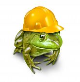 image of land development  - Responsible development environmental concept with a green frog wearing a yellow construction hard hat as a symbol of conservation and protection of wildlife habitat that is threatened by new real estate or resource industry projects - JPG