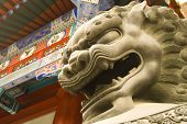 Lion Head In Beijing