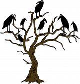 ravens on the rampike
