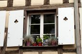 White window with shutters and flower pots