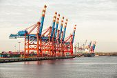 stock photo of lifting-off  - Deserted port terminal in a harbour for loading and offloading cargo ships and freight with rows of large industrial cranes to lift goods off the decks and from the holds - JPG