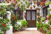 stock photo of green wall  - Flowers Decoration of Vintage Courtyard - JPG