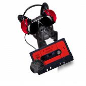 Dog Music Cassette