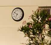 Analog Clock On The Wall