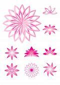 Lotus vector illustrations