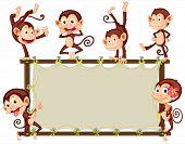Illustration of monkeys around a banner