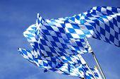 Bavarian Flags Waving Over Oktoberfest