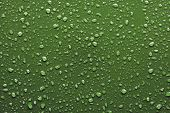 Raindrops On Green Background