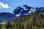 Mount Shuksan Evergreens Mount Baker Ski Area Washington