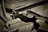 Gargoyle on Sacre Coeur Basilica