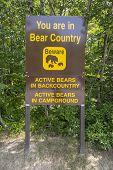 Bear Warning Sign