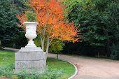 Madrid Park