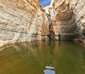 Picturesque canyon En-Avdat in the desert Negev. Sandstone walls of canyon form round bowl. The bowl of falls reflects the sky