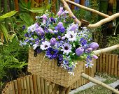Bamboo Bicycle With Bouquet In Basket