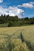 Footpath in Grain And Pylons