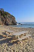 Beach Picnic Tables