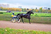 Moscow, Russia, October, 05, 2014: Racing at Moscow Hippodrome