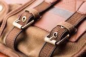Brown backpack buckle
