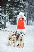 foto of sled-dog  - Beautiful woman with green eyes - JPG
