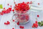 Red Currant Fruit Jar Wooden Table