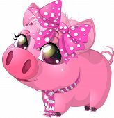 glamour pig