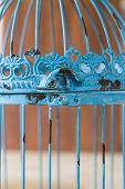 Birdcage Vintage