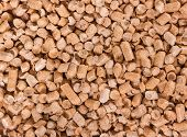 pic of non-biodegradable  - Background of wooden filler for cat litter - JPG