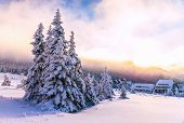 stock photo of house woods  - Winter landscape - JPG