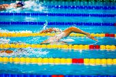 stock photo of swim meet  - free style men competition in swimming pool - JPG