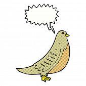 cartoon common bird with speech bubble