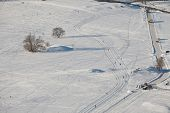 Snowy park with cross-country skiing track