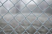 Frozen wire fence in winter frost