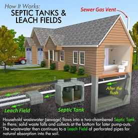 foto of feces  - A minimal text infographic of a contemporary septic tank system - JPG