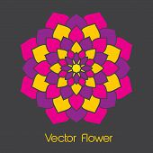 pic of backround  - A colorful vector flower on a black backround - JPG