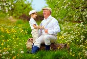 stock photo of grandpa  - grandson playing with grandpa pulling the braces spring garden - JPG