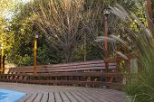 picture of vegetation  - Wooden deck and bench by the pool - JPG