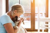stock photo of dog-house  - Senior woman with her dog inside of her house - JPG