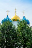 picture of trinity  - Domes of Dormition Cathedral with trees in the Trinity Lavra of St - JPG