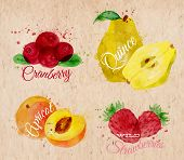 pic of apricot  - Fruit set drawn watercolor blots and stains with a spray cranberry - JPG