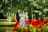 image of bridal veil  - Bride and Groom at wedding Day walking Outdoors on spring nature - JPG