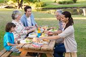 pic of extended family  - Extended family having an outdoor lunch on a sunny day - JPG