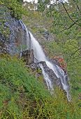 picture of mckenzie  - photo of the mckenzie fall  - JPG
