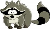 picture of raccoon  - Raccoon on a white background vector illustration - JPG