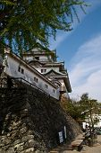 A View Of The Side Of Wakayama Castle, Japan